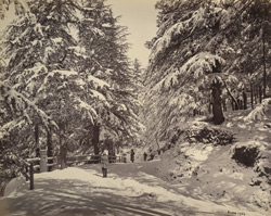 View on the Mall, Simla [in] winter.